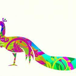 Peacock Fabric Sticker in Vibrant colors Wall Decals